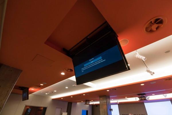 "DSS TV Deckenlift 55"", RF Control, Metall /1411"